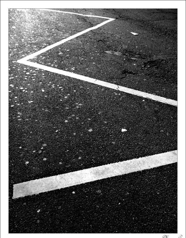 Au ras du sol - Photo 2