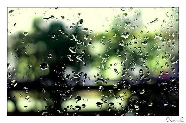 test pluie vert PF - BLOG