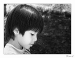 tris portrait v3  small