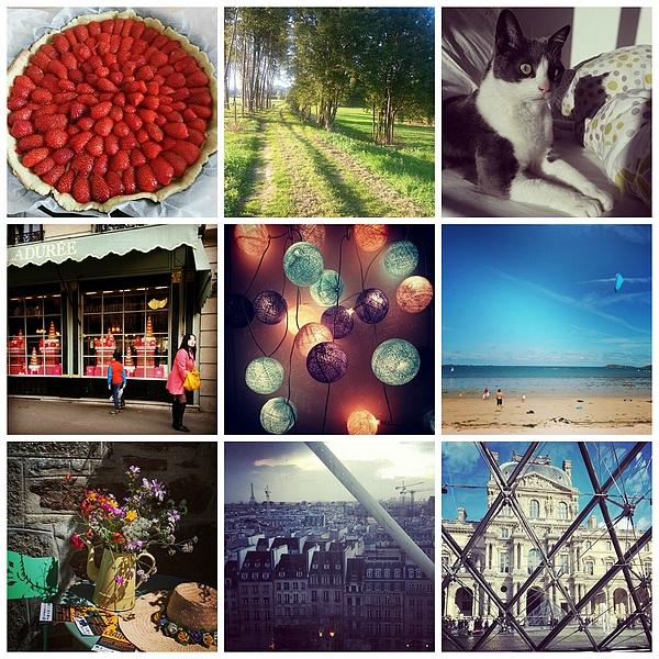 PF Instagram Collage 4